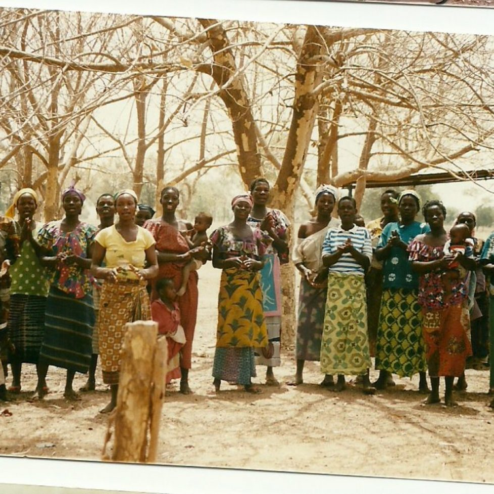 donne a Koti